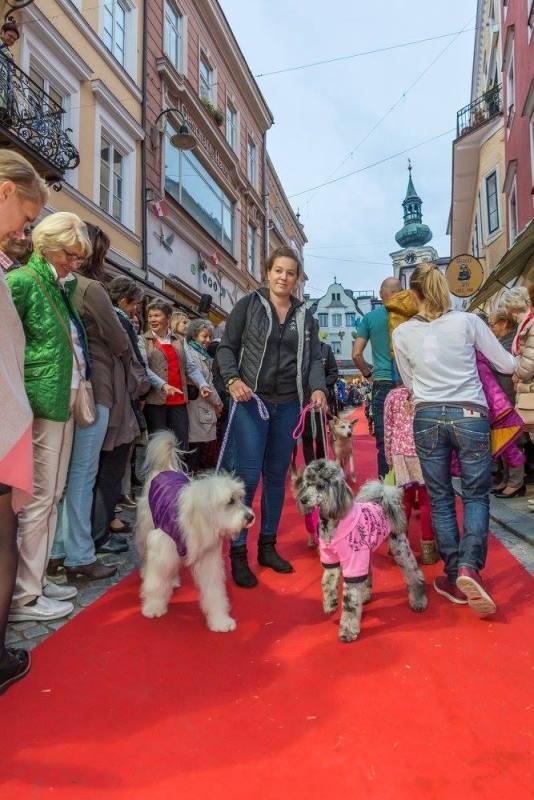 schmankerlroas modeschau gmunden 2017 (12)