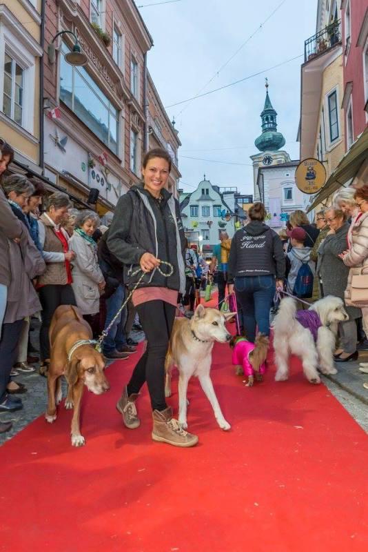 schmankerlroas modeschau gmunden 2017 (13)
