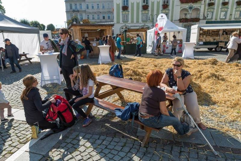 schmankerlroas modeschau gmunden 2017 (7)