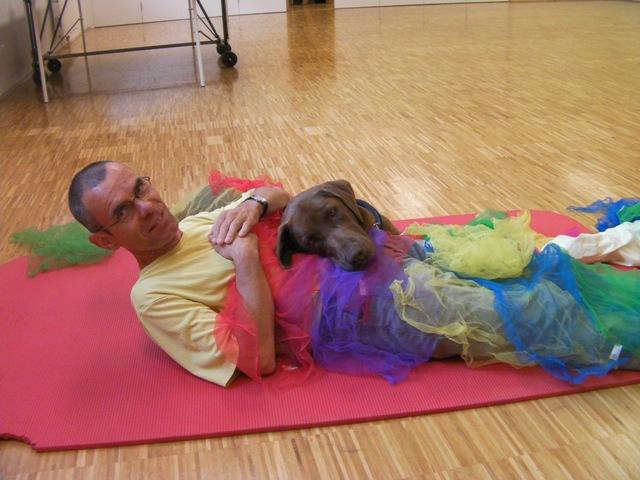 Hunde schenken Sonne – Spendenverein für Tiergetragene Therapien