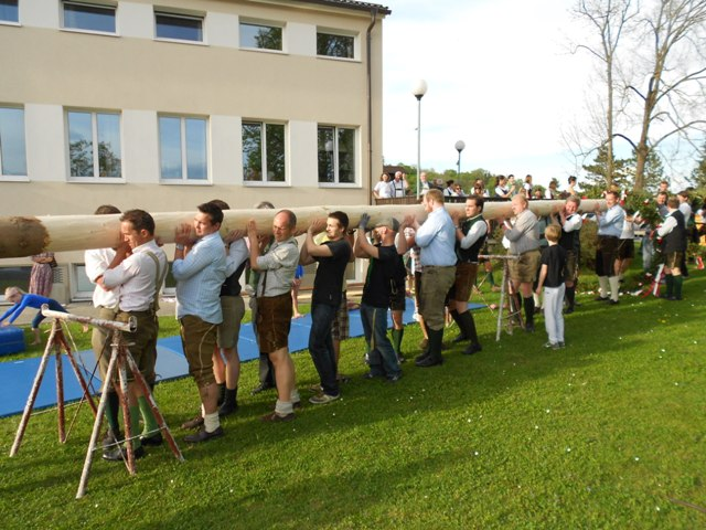 Gmunden: Maibaum aufstellen mit Hindernissen | Foto: Turnverein Gmunden