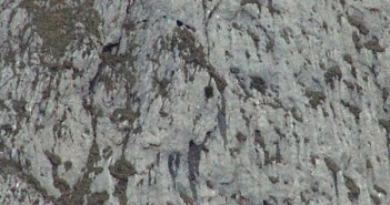 Schwierige Rettungsaktion zweier Vöcklabrucker Alpinisten am Untersberg | Foto: aktivnews.de