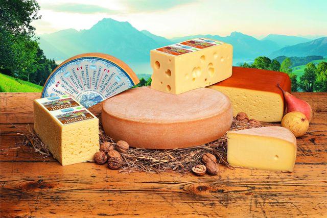 Gmundner Milch holt 14 mal Gold beim Qualitätswettbewerb