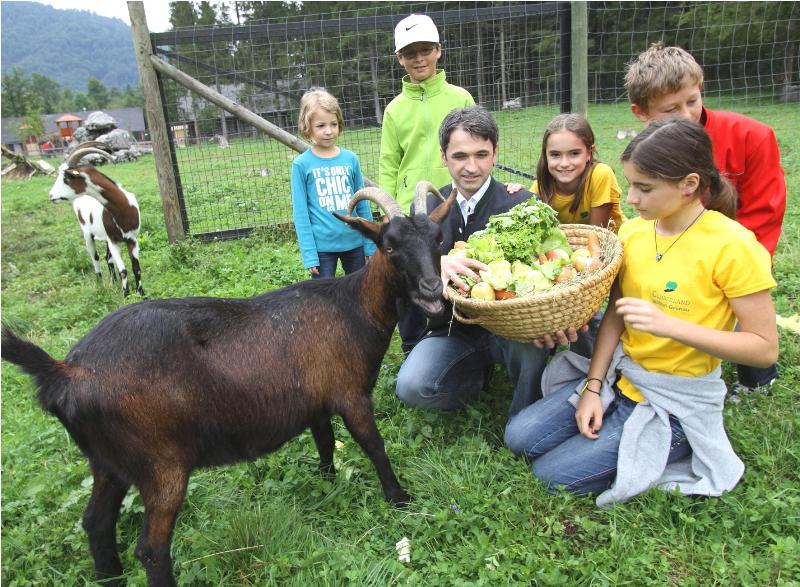 2. Sommerfest im Wildpark Grünau - ein Fest für die ganze Familie