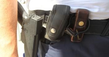 Laakirchen: Hund verbellt Einbrecher - Dienstwaffe Polizei