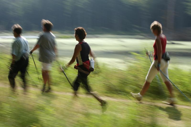 Alpinathlon in Gschwandt - Sportliche Bewegung für einen guten Zweck | Foto: priv/Brandner