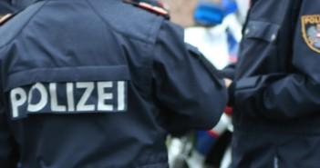 Polizei im Einsatz | Foto: salzi.at