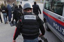 Cobra-Einsatz im Salzkammergut - Pensionist festgenommen