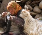 Ladakh-Titelfoto
