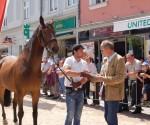 pferdemarkt 2014