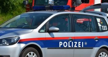 Polizei-Auto und FF-Auto 2 © Wolfgang Spitzbart