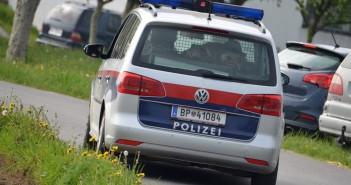 Polizei-Sharan bei Tag © Wolfgang Spitzbart