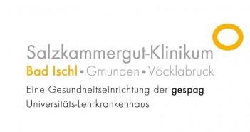Gespag Logo Bad Ischl