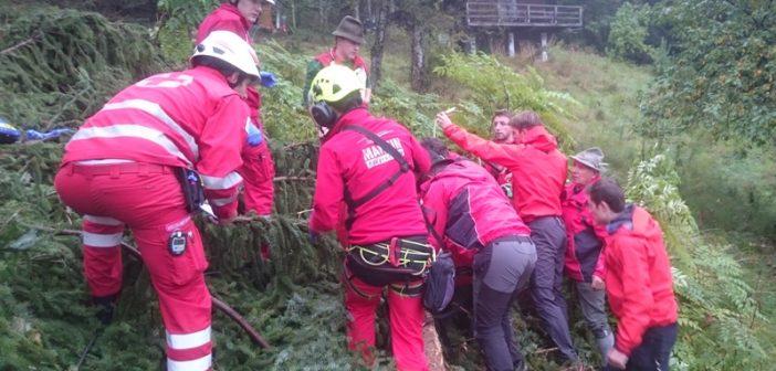 Forstunfall in Bad Goisern