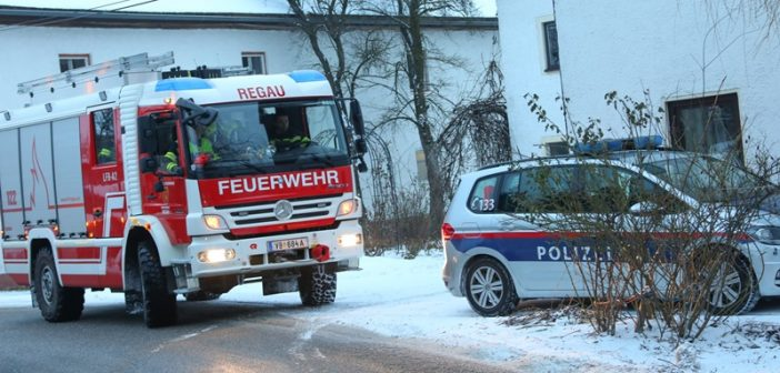 Personenrettung nach Forstunfall in Regau