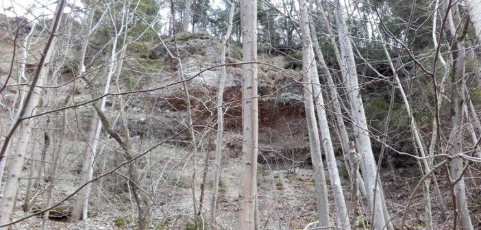 Steinschlaggefahr: Wanderweg am Traunufer gesperrt