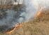 Böschungsbrand in Laakirchen