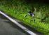 "Motorradlenker bei Kollision mit <span class=""caps"">LKW</span> schwer verletzt"